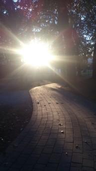 weg-im-licht_stadtpark-klagenfurt_-walter-pobaschnig