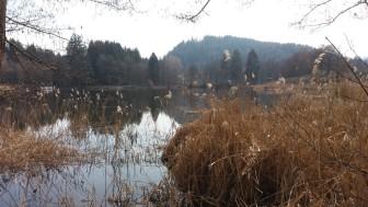 Flatschacher See_Kärnten, Walter Pobaschnig