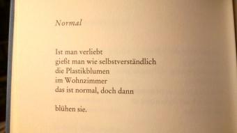 Gedicht_Safiye Can _Normal _
