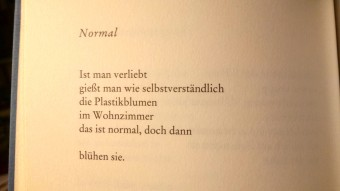 Gedicht_Safiye Can _Normal _