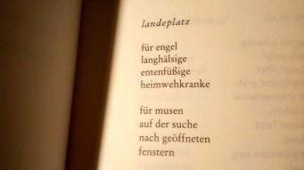 landeplatz_doris runge