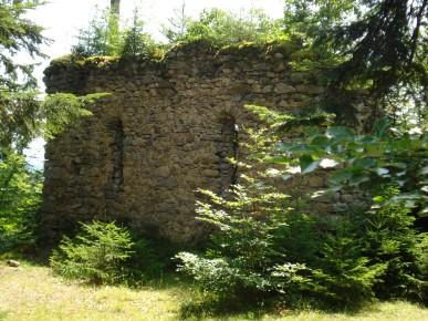 Steuerberg_Ruine Walter Pobaschnig