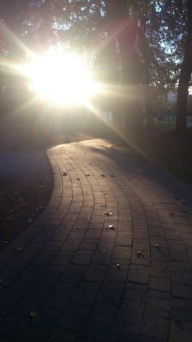 Stadtpark Klagenfurt - Walter Pobaschnig