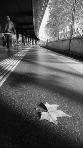 Motiv _ Bahnsteig_Herbst